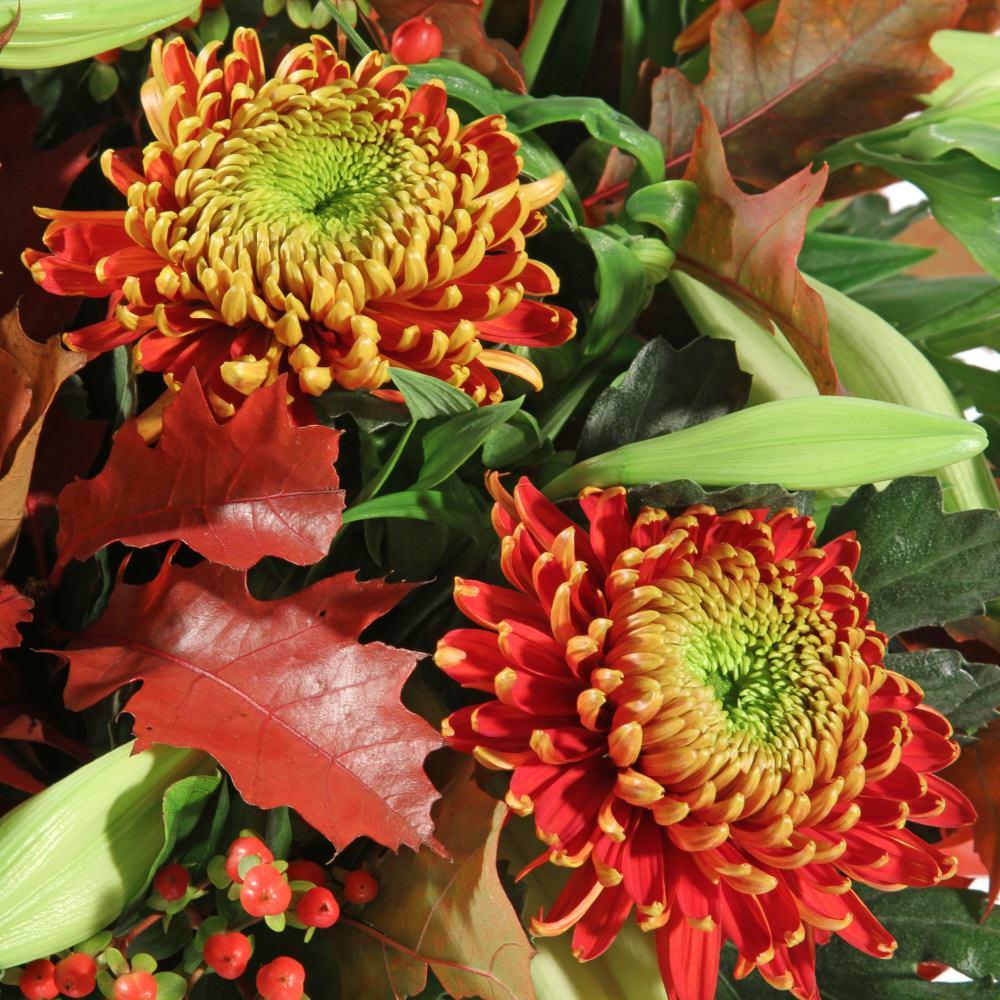 Bloemen Bestellen Rouwbloemen Bezorgen Bloemen | Share The Knownledge: popcorntimeforandroid.com/post/bloemen-bestellen-rouwbloemen...